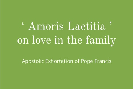 A Conversation with Cardinal Schonborn on 'Amoris Laetitia'