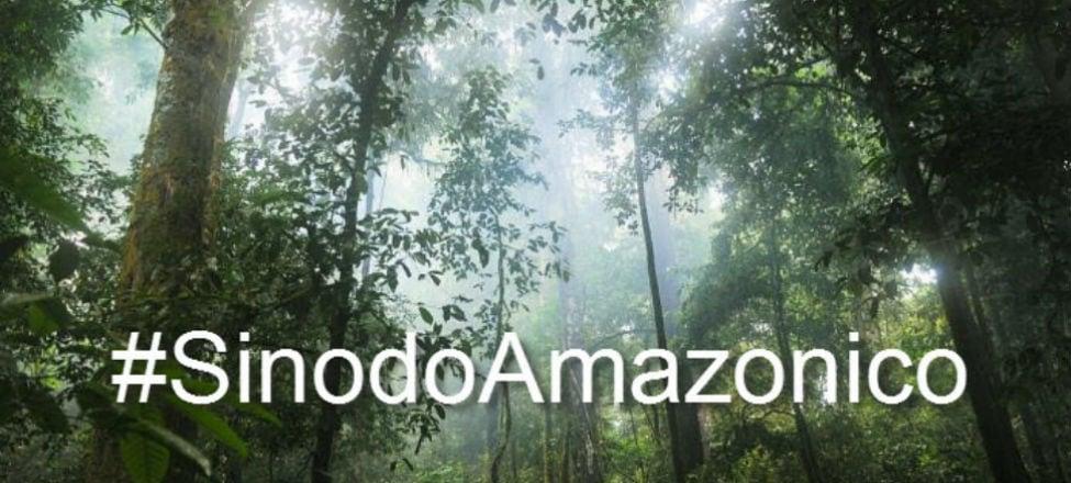 Four Criteria to Interpret the Amazon Synod
